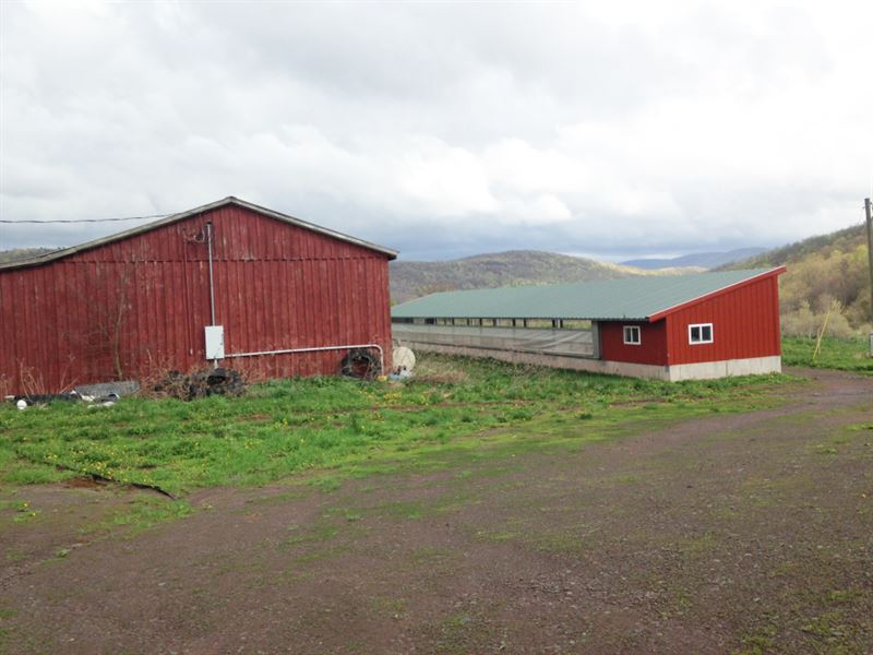 20 Acres Farmland Barn Kortright Ny : Farm for Sale ...