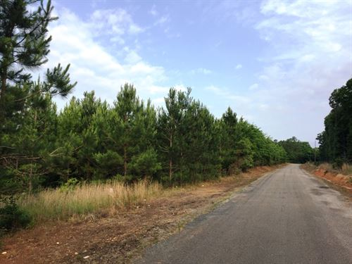 Milam Road Tract : McNairy : Tennessee