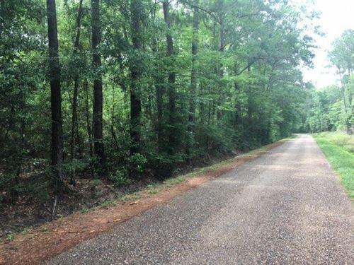 Ellis Road 8 Acres : Varnado : Washington Parish : Louisiana