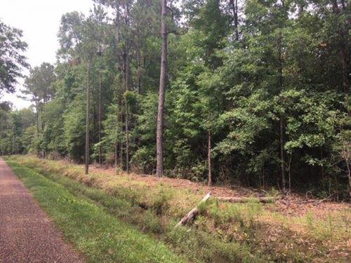 10 Acres Ellis Road : Varnado : Washington Parish : Louisiana