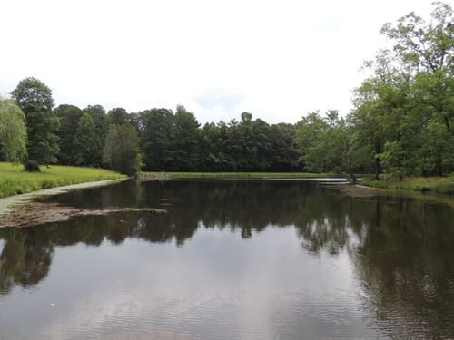 62.25 Ac On Gordon Road : Newnan : Coweta County : Georgia
