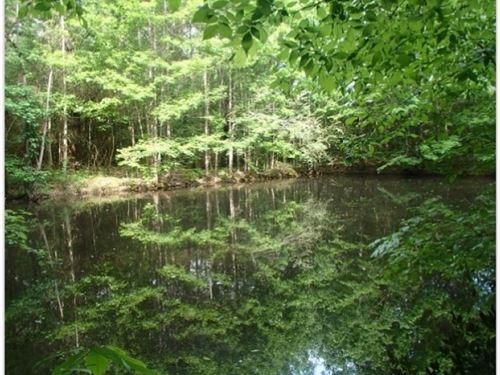 44 Acres In Neshoba County : Philadelphia : Neshoba County : Mississippi