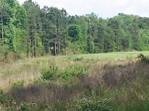 Hunting Tract-Potential Development : Eatonton : Putnam County : Georgia