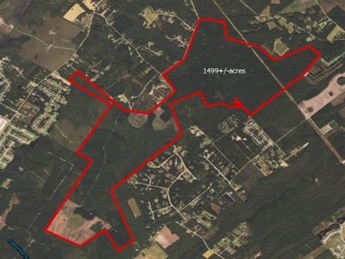 Midland Rd Tract : Springfield : Bulloch County : Georgia