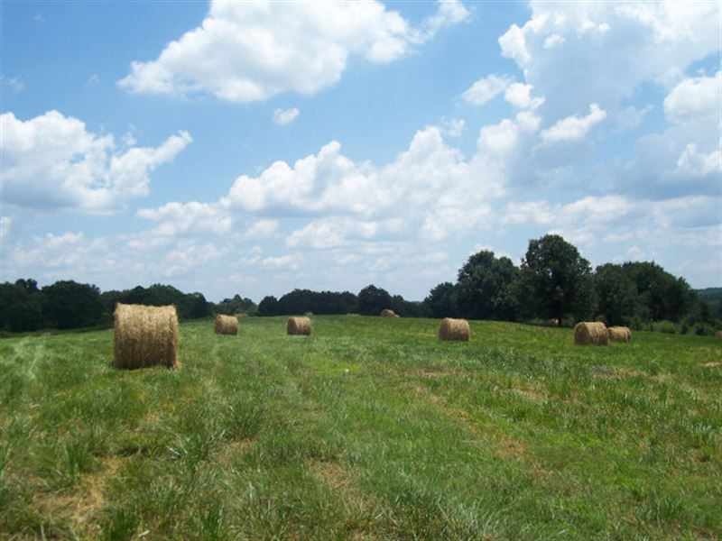 Multi Use Land Farm For Sale Maysville Jackson