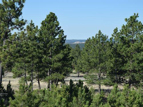 Big Sky 12 : Hot Springs : Custer County : South Dakota