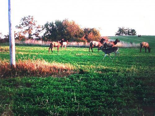 Smith Falls Hunting Haven : Valentine : Cherry County : Nebraska