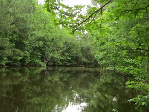 10 Acres In Madison County : Canton : Madison County : Mississippi
