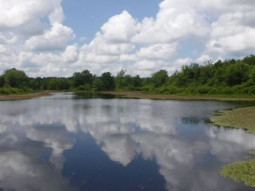 Beautiful Private 5-6 Acre Lake : Celina : Clay County : Tennessee