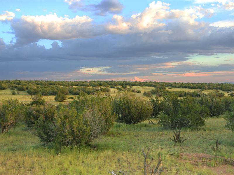 Scenic Northern Az Wilderness Ranch : Saint Johns : Apache County : Arizona