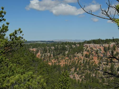 Canyon Rim Ranch North Star Iii : Hot Springs : Custer County : South Dakota