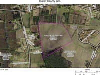 30 Ac Farm, Greenevers, Dup. Co. : Greenevers : Duplin County : North Carolina