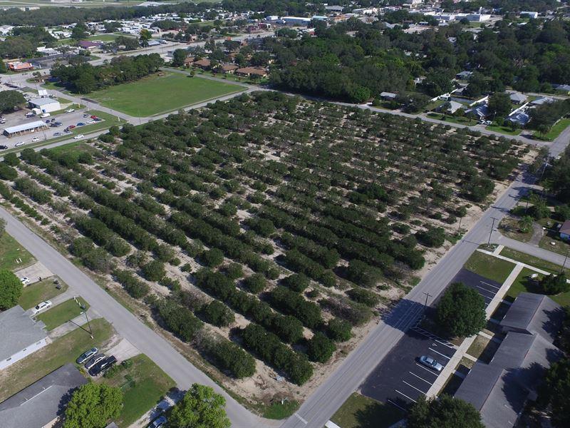 8 39 Acres Of Development Land Farm For Sale Avon Park