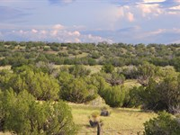 Scenic Az Wilderness Ranch : Saint Johns : Apache County : Arizona