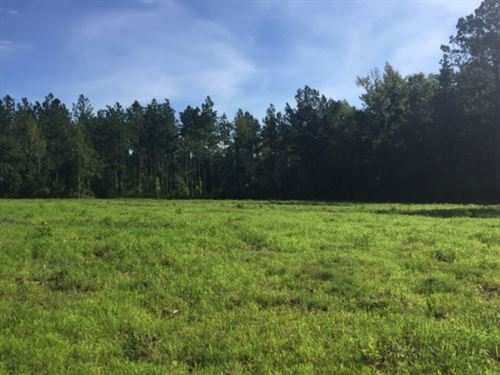 14 Acres Creek Frontage Home Site : Columbia : Marion County : Mississippi