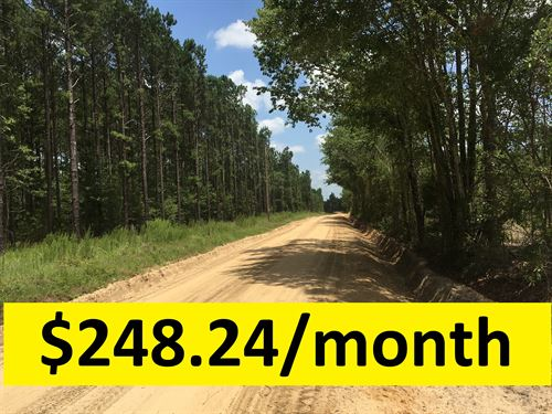 Owner Financed Private Lot : Kite : Emanuel County : Georgia