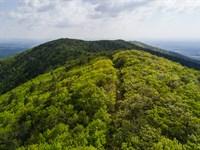 Patrick County, Va High Elevation : Stuart : Virginia Beach City County : Virginia