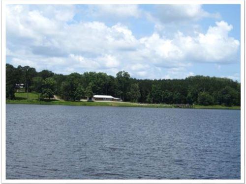 585 Acres In Attala County : Kosciusko : Attala County : Mississippi