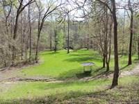 Prime Hunting Land : Satartia : Yazoo County : Mississippi