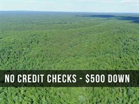 6 Acres Bordering National Forest : Birch Tree : Shannon County : Missouri