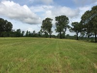 Cabot Schools, Homesite, Farm, Hay : Austin : Lonoke County : Arkansas