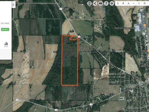 117 Ac - Crp And Hunting Tract : Winnsboro : Franklin Parish : Louisiana