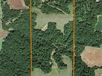 Beautiful Hunting Farm : Milton : Pike County : Illinois