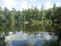 Cedar Pond : Waynesboro : Burke County : Georgia