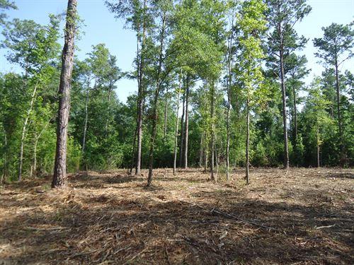 Affordable Acreage Near Lake Tobo : Lizella : Bibb County : Georgia