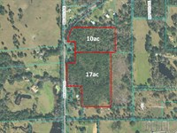 17 Acres In Prime Hwy 225 Location : Reddick : Marion County : Florida