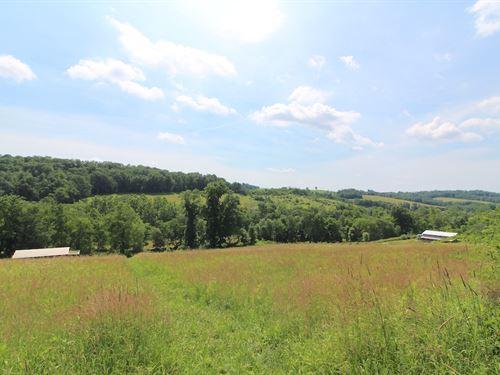 Sr 60 - 30 Acres : Warsaw : Coshocton County : Ohio