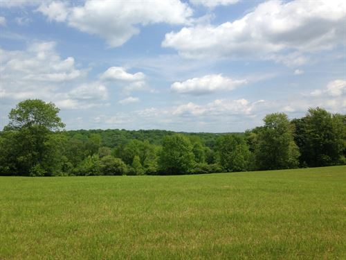 18 Ac Farmland Borders State Forest : Preston : Chenango County : New York