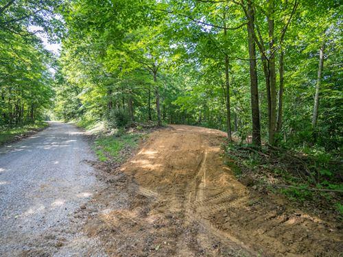 Tick Ridge Rd - 50 Acres : Amesville : Athens County : Ohio