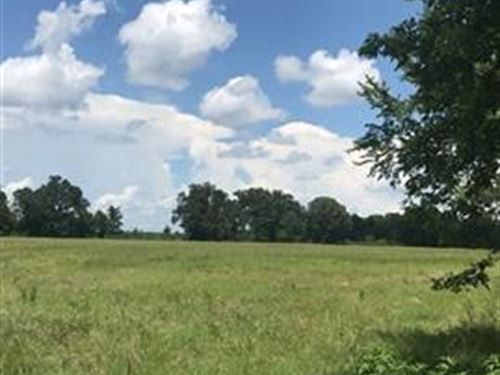 12.05 Acres : Paris : Lamar County : Texas