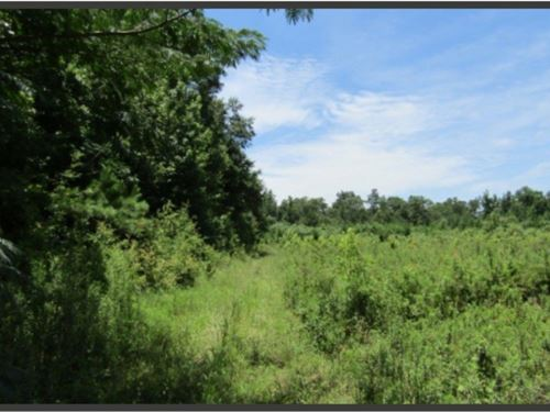 33 Acres In Pearl River County : Crossroads : Pearl River County : Mississippi