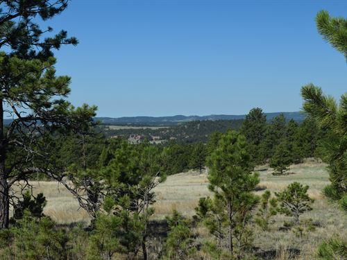 North Star I At Canyon Rim Ranch : Hot Springs : Custer County : South Dakota