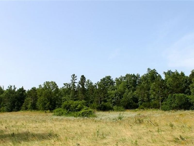 Ozark Shannon County Missouri Property For Sale
