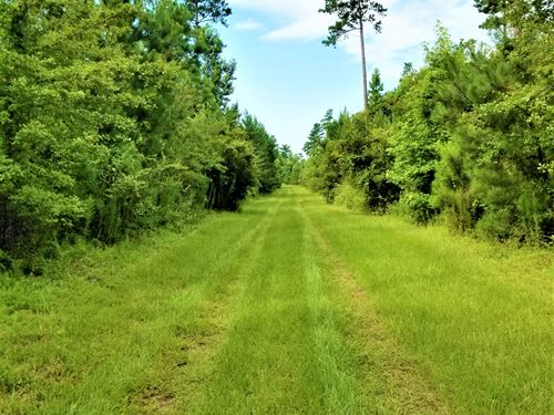 Sister Lake Tract : Williston : Barnwell County : South Carolina