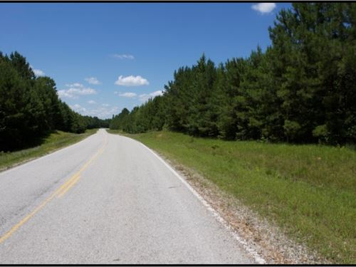 200 Acres In Choctaw County : Ackerman : Choctaw County : Mississippi
