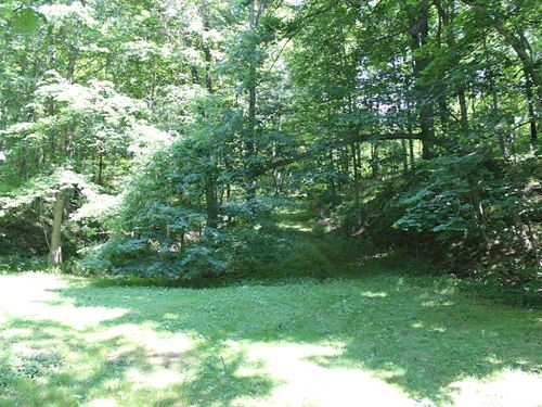 Jockey Hollow Rd - 17 Acres : Flushing : Harrison County : Ohio