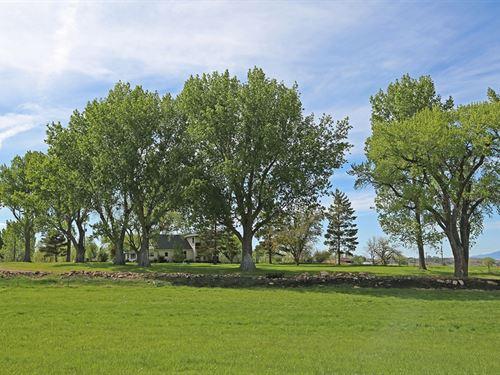 Warner Ranch : Montrose : Colorado