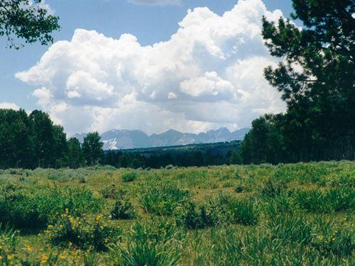 Government Springs Ranch : Montrose : Ouray County : Colorado