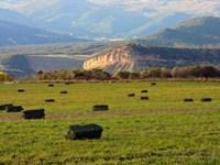 Shadow Mesa Ranch : Cedaredge : Delta County : Colorado