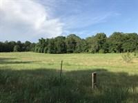 High-Fenced Farm & Homesite : Stephens : Oglethorpe County : Georgia