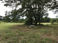 Beautiful Home Site - Corner Lot : Stephens : Oglethorpe County : Georgia