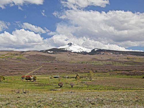 Nelson Springs Ranch : Norwood : San Miguel County : Colorado