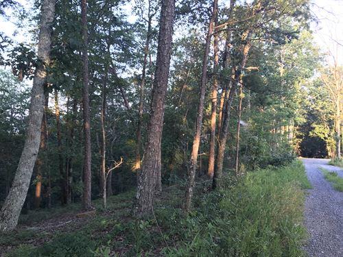 5.94 +/- Dividable Wooded Acres : Ranger : Gordon County : Georgia
