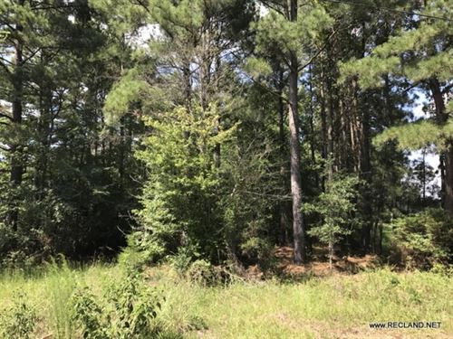 6.5 Ac - Timberland On Edge Of Town : Harrell : Calhoun County : Arkansas