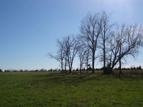 Small Acreage In Northeast Texas : Paris : Lamar County : Texas