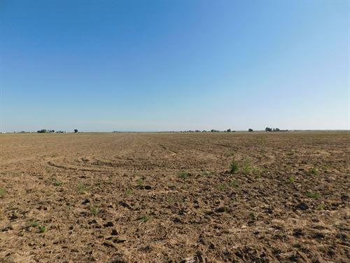Oskarson Farm For Sale : Wiggins : Morgan County : Colorado